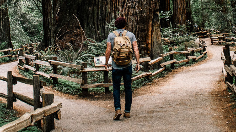 ᐅ Selbstfindung: 7 Tipps, die Dich Deinem wahren Selbst näherbringen › FlowFinder