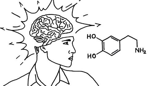 Der wichtigste Tipp für Deine Ziele & Deinen Selbstwert (Dopamin-Detox)