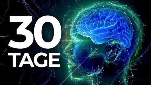 Wie Du Dein Gehirn in 30 Tagen umprogrammierst